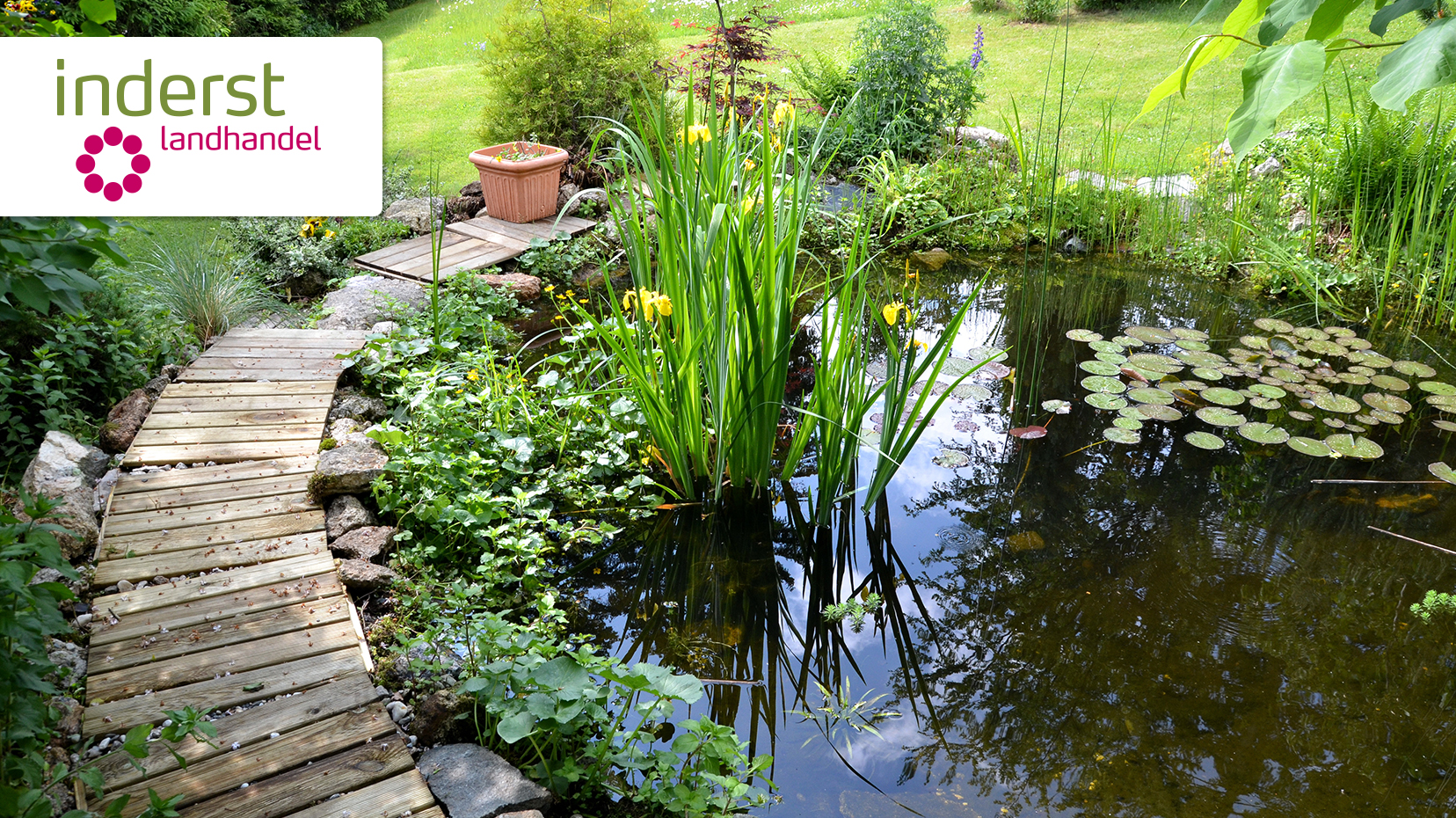 Immagini laghetti da giardino giardino con laghetto with for Piante da laghetto