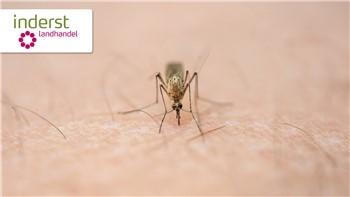 7 consigli utili contro le zanzare