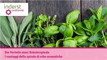 I vantaggi della spirale di erbe aromatiche