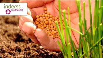 I vantaggi del concime organico per qualità bio nel tuo giardino