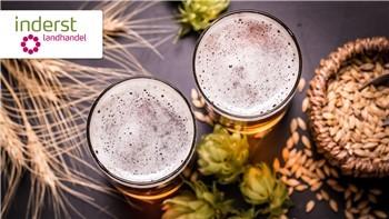 6 passi per fare la birra in casa