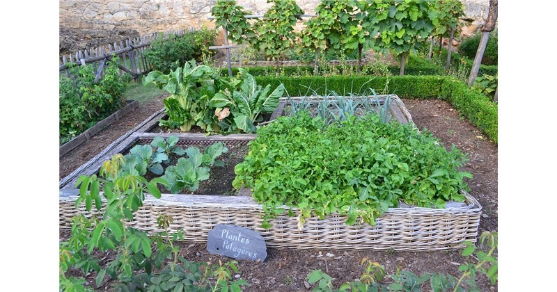 Crea il tuo orto inderst - Crea il tuo giardino ...